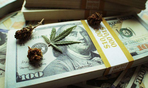 TDI Podcast: The Marijuana Market (#498)