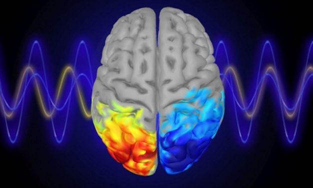 TDI Podcast: Left Brain Research (#645)