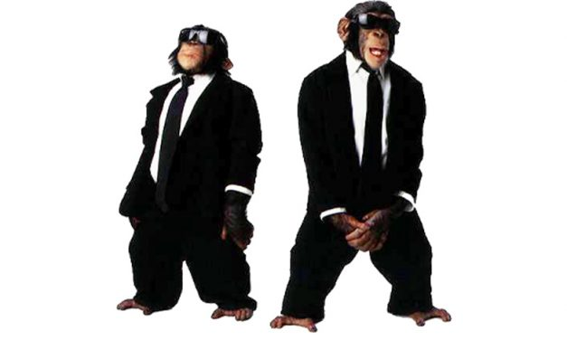 TDI Podcast: Monkeys in Suits (#663)